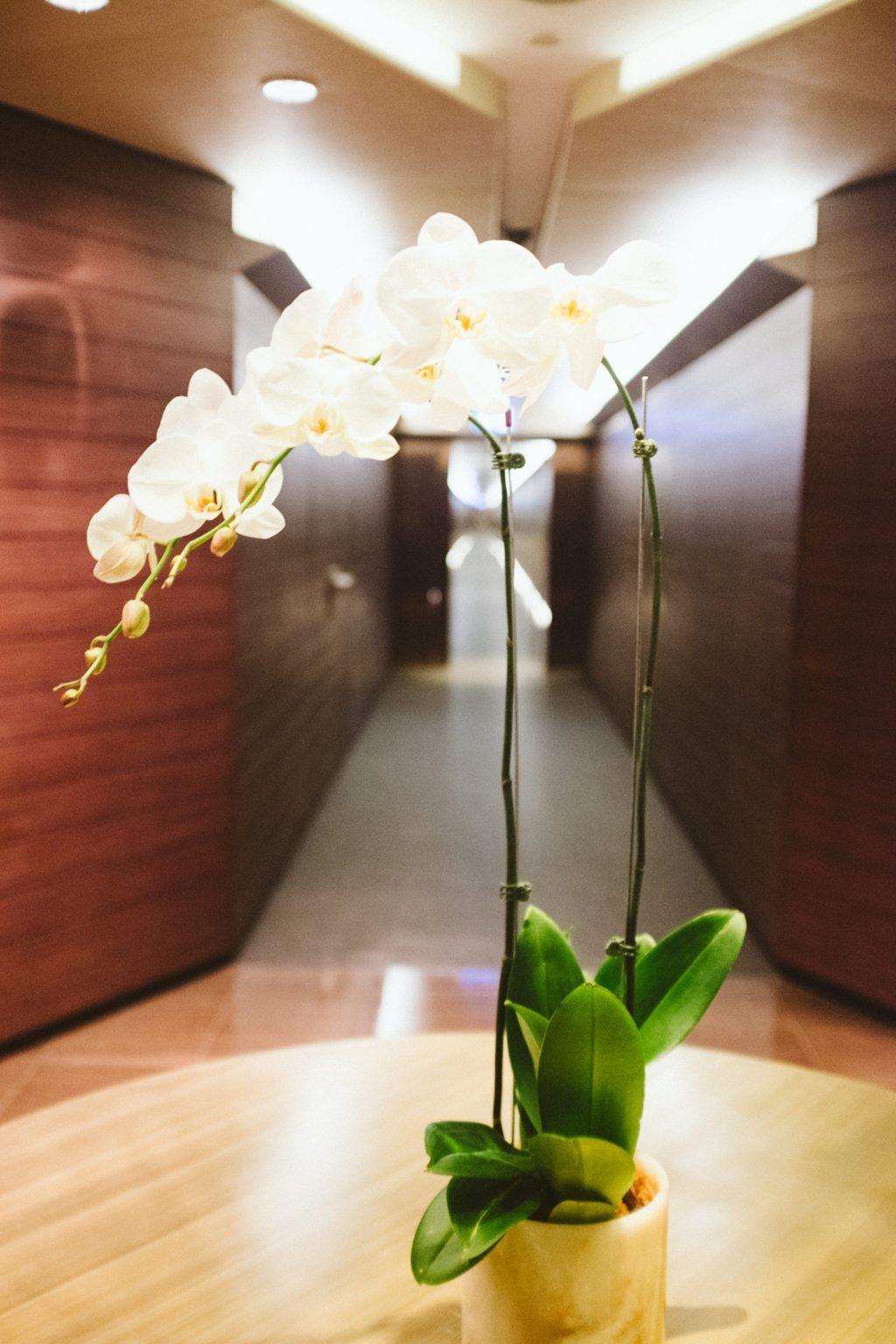 armani-hotel-dubai-8714