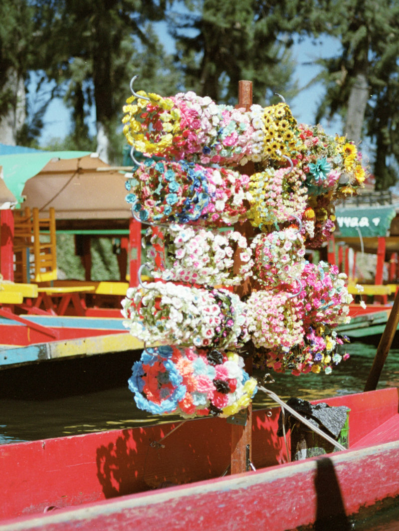 Mexico City in 35mm – Traveling with Film