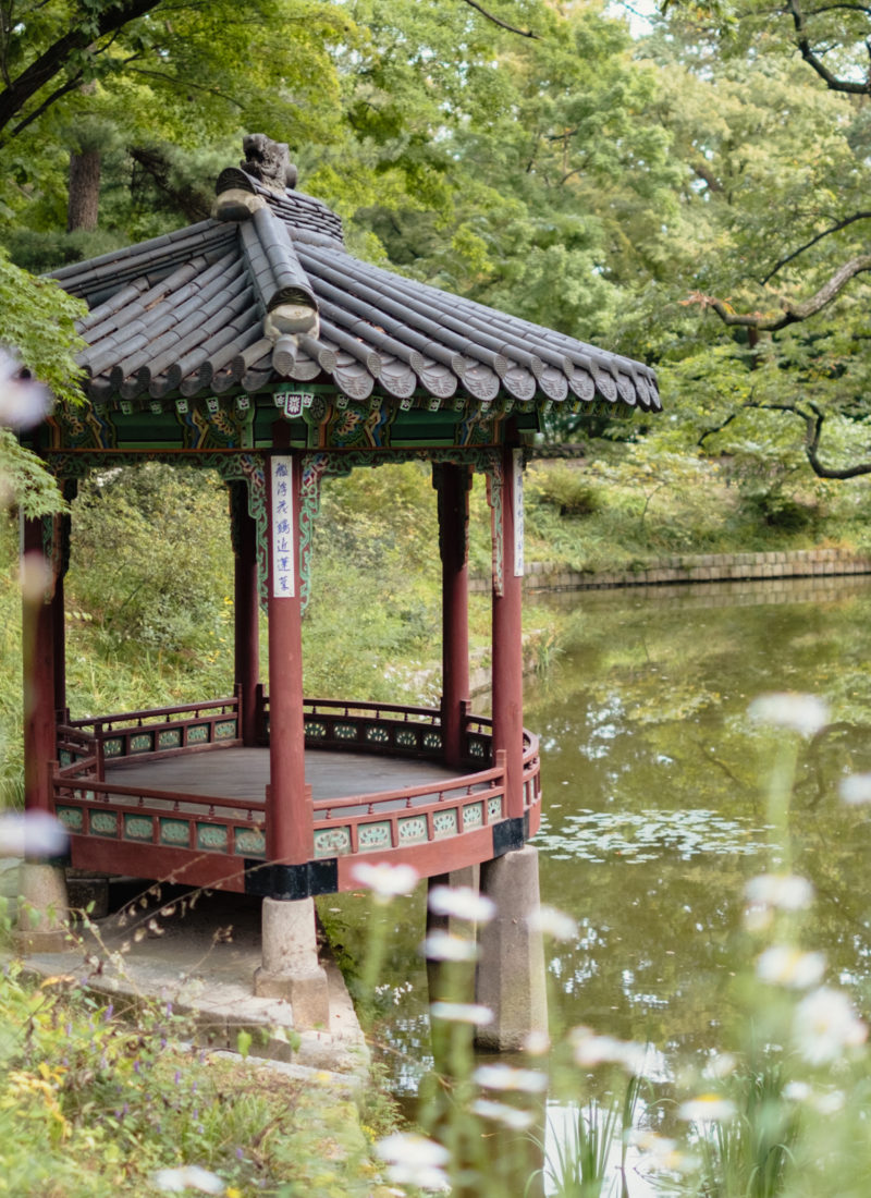 Snapshots from Seoul